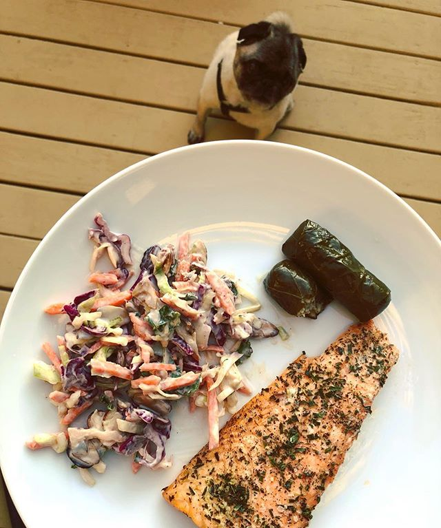 DINNER: ROASTED SALMON WITH TARRAGON, HOMEMADE COLESLAW, AND  STUFFED GRAPE LEAVES 🐶⠀ *⠀ Tip: Use plain lactose free yogurt in your coleslaw for #FODMAP 😋⠀ *⠀ My pug will eat anything but he REALLY loves fish 🐟