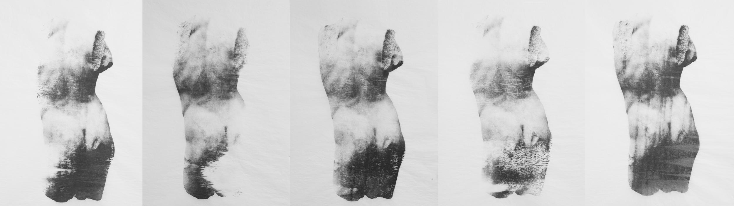 tissue lovers 4.jpg