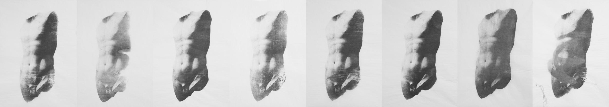 tissue lovers 3.jpg