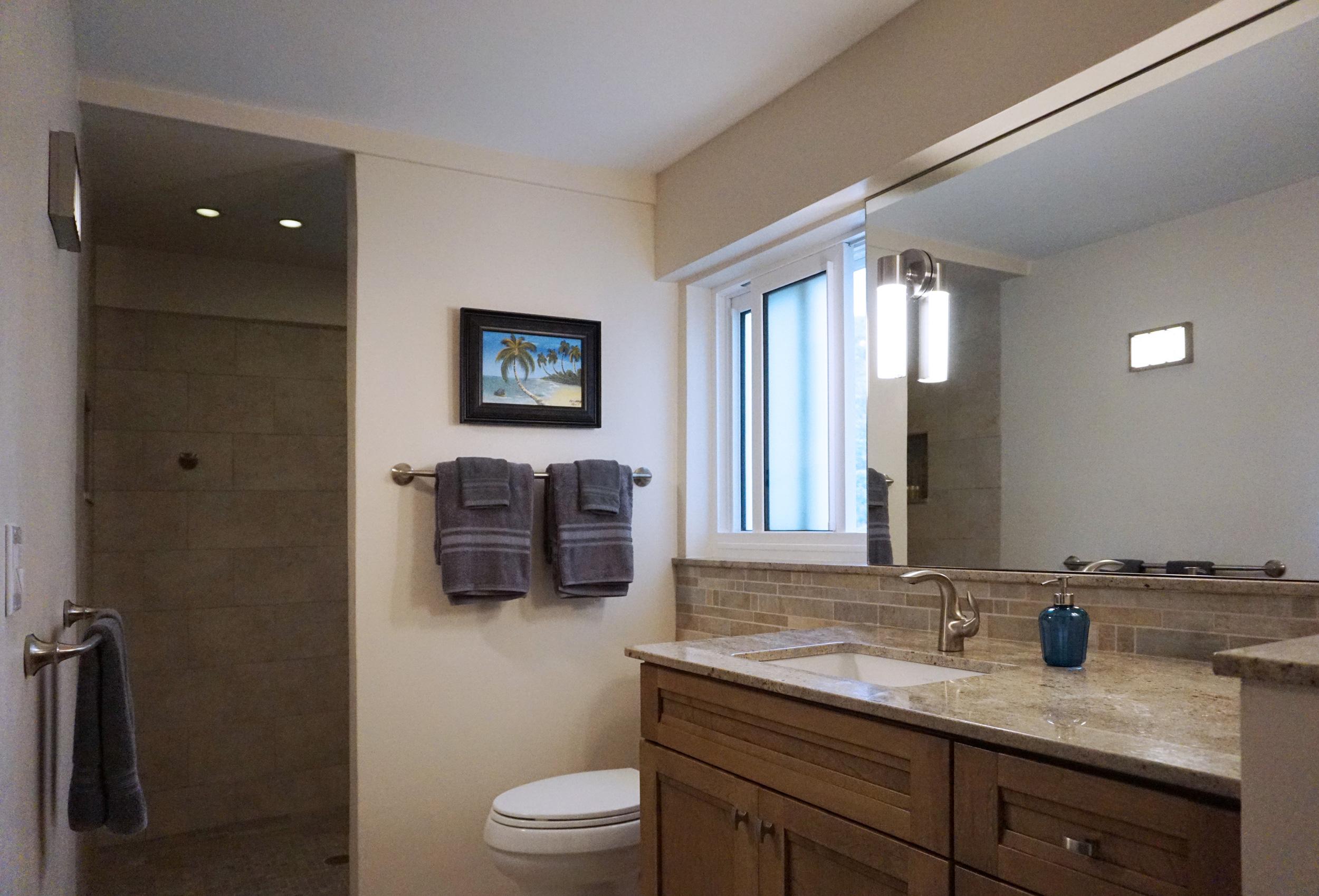 Lower Level Bathroom & Walk in Shower