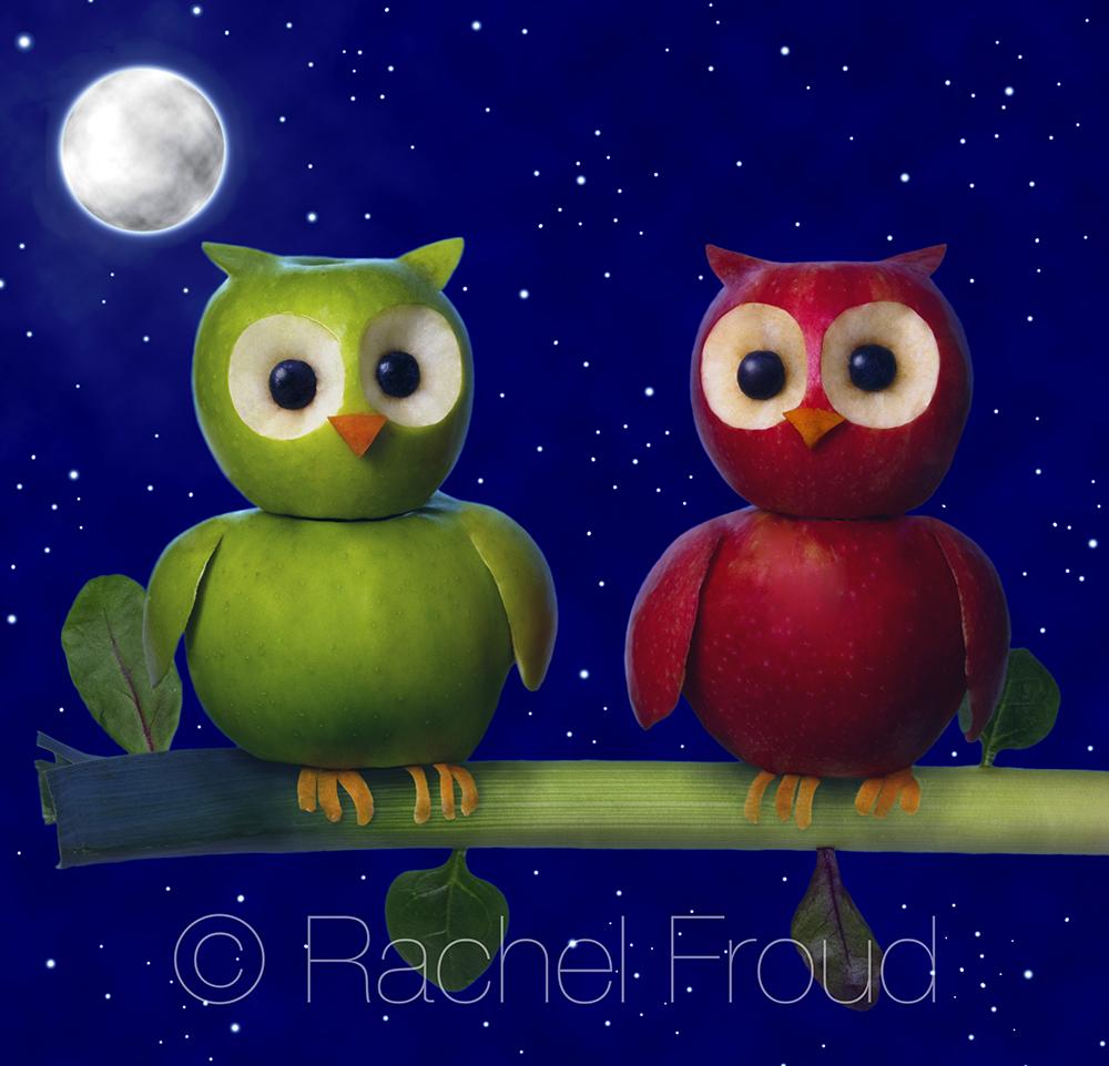 Owlsweb.jpg