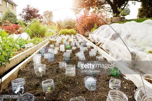 Photo by John Rensten/DigitalVision / Getty Images