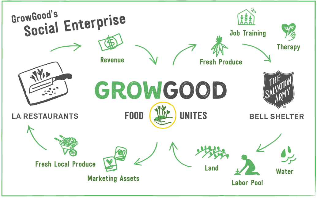 GrowGood-SocialEnterprise-infographic.png