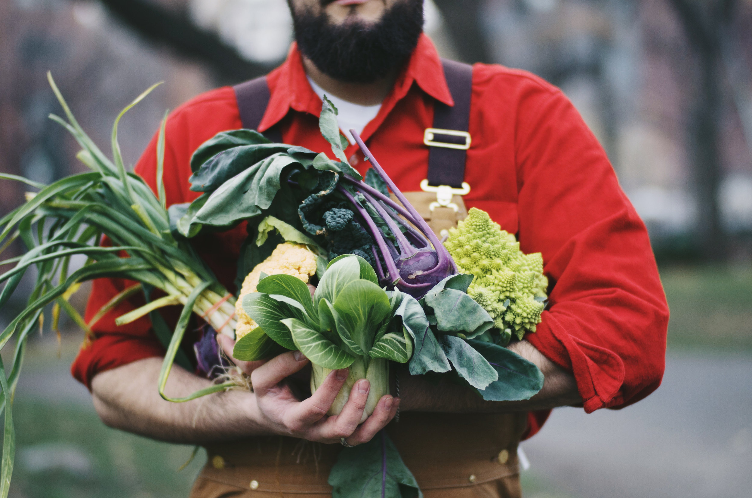 A winter's produce haul from the Union Square Farmers Market. Photo taken by @tutes.
