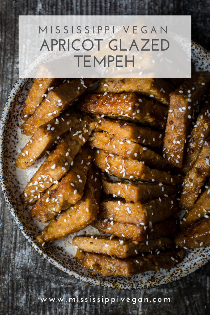 apricot glazed tempeh (3).png