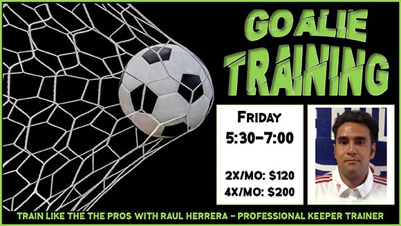 GoalieTraining06262018.png