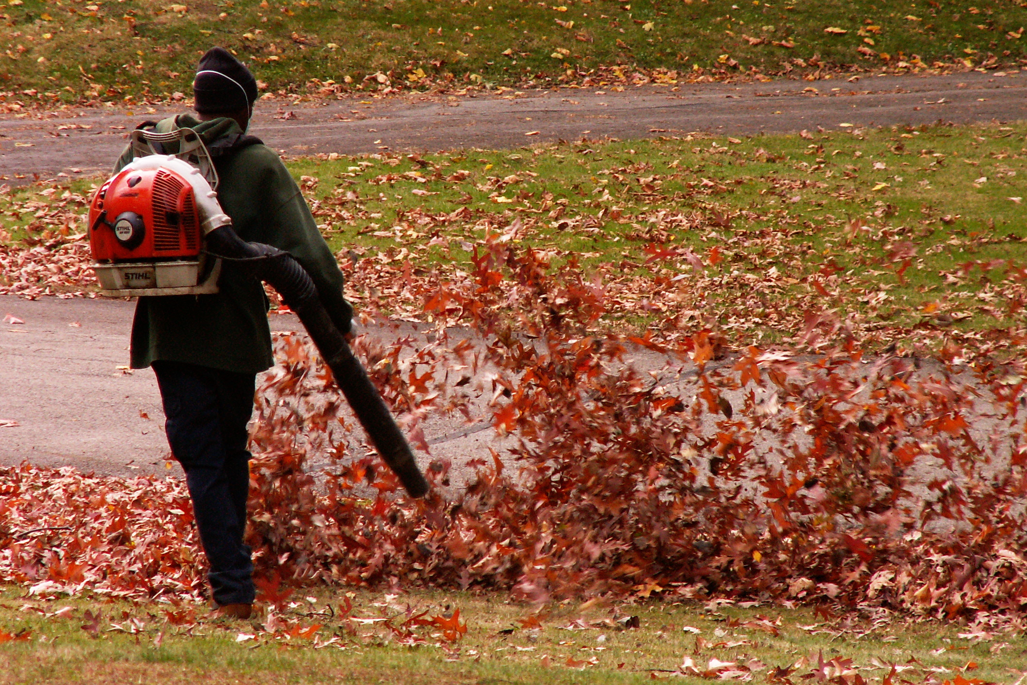 Best Leaf Blower   Disclaimer: There are affiliate links in this post. This means that at no cost to you, I will receive a small commission if you purchase through my link. I will only ever promote the products and services that I trust and 100% recommend. You may read my full  disclosure policy  for more information. Thanks for supporting my business in this way.