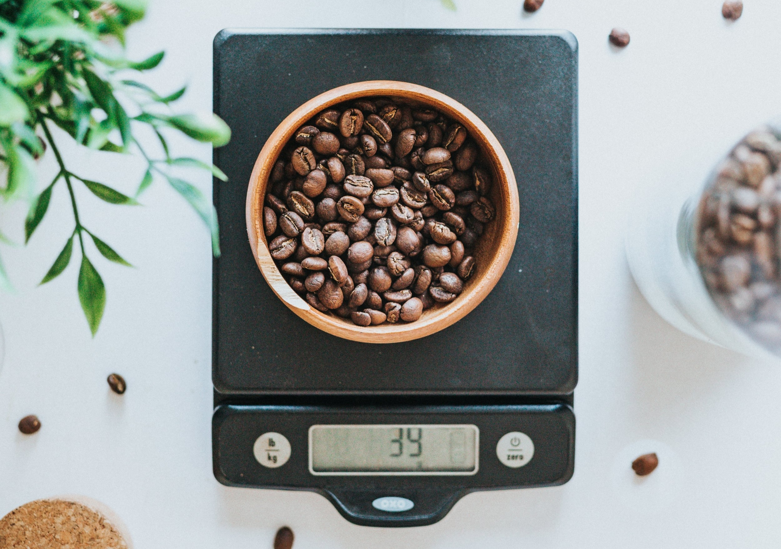 The Best Food Scales For 2021