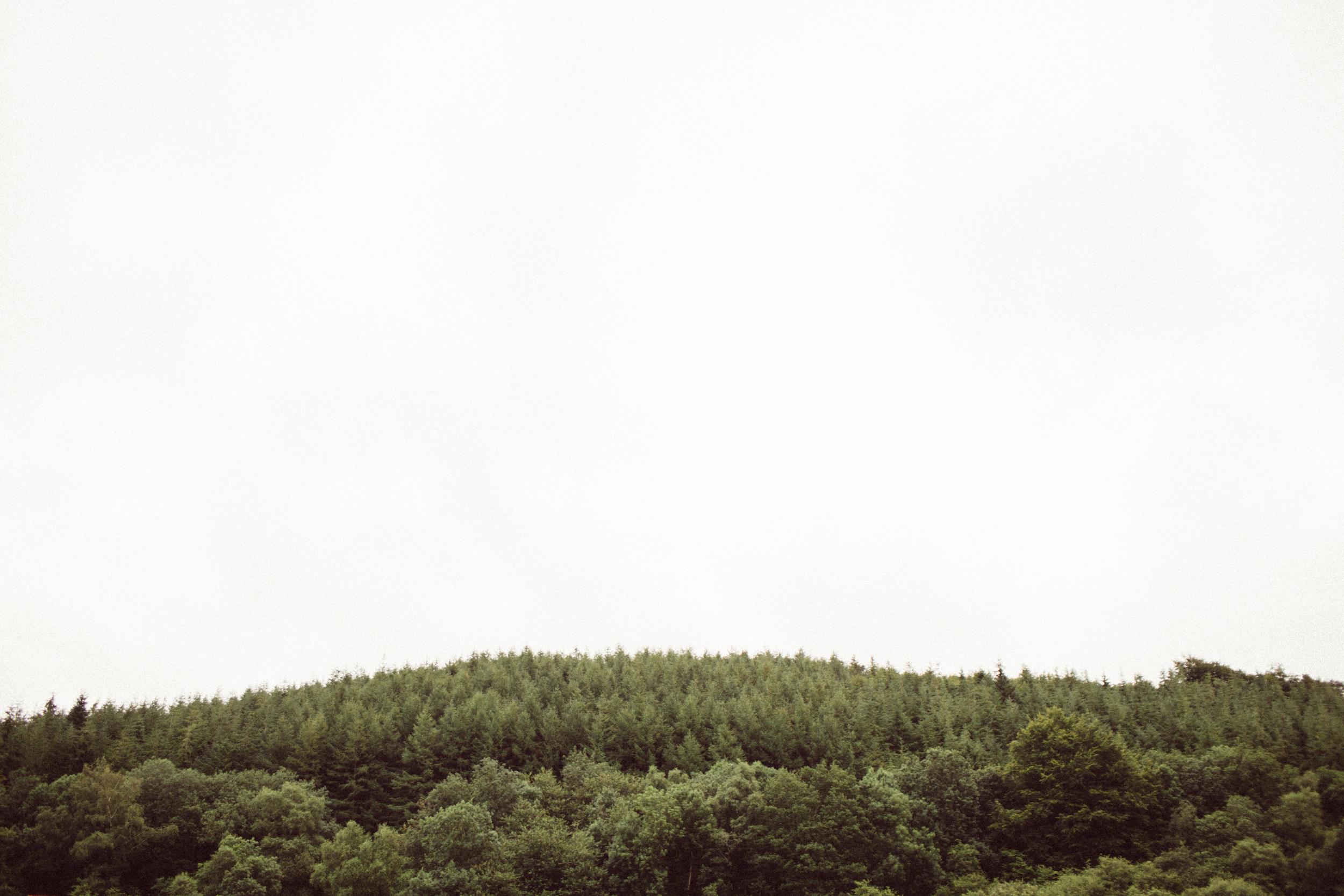 Mikaela Hamilton-Somersault Friday-13.jpg