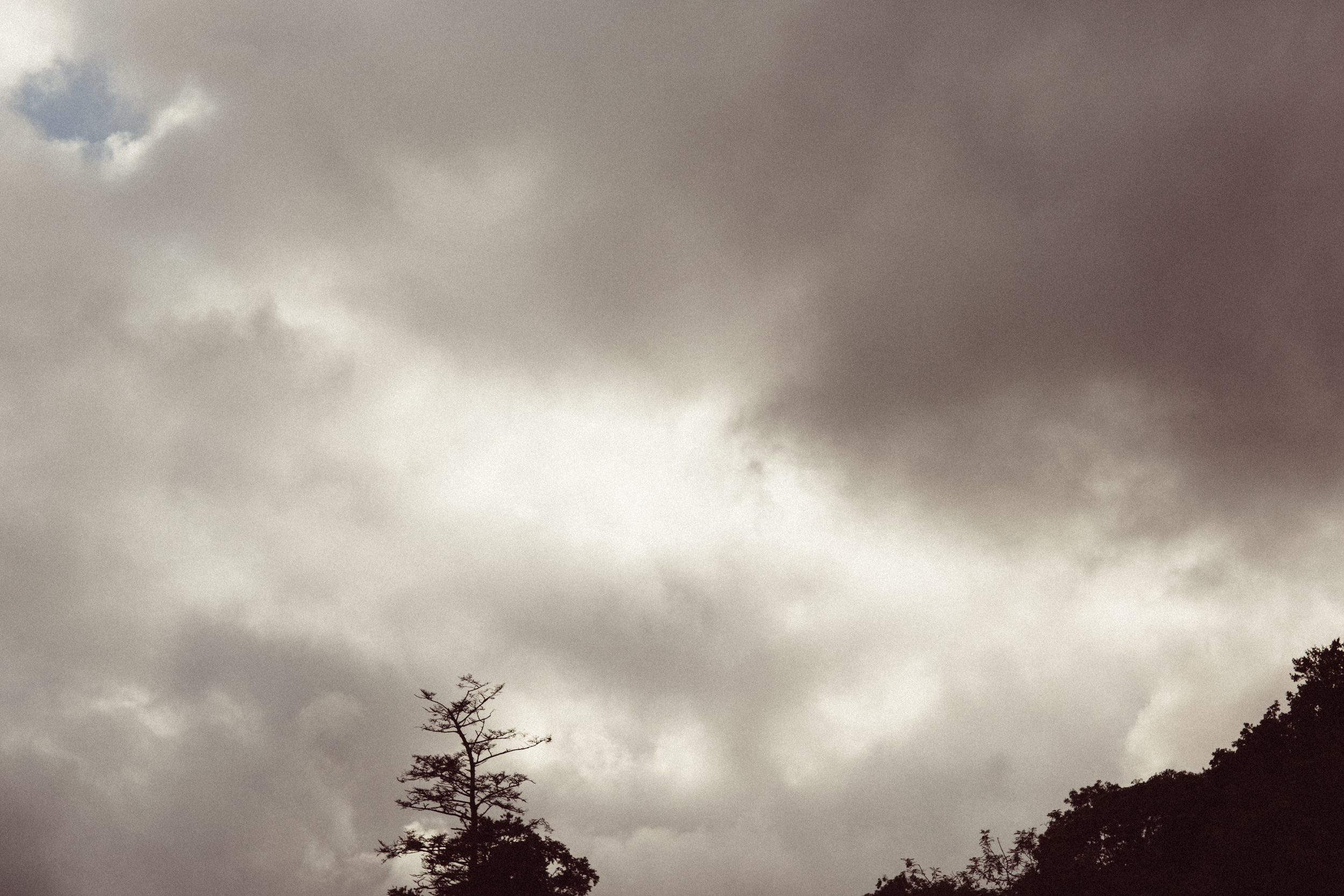 Mikaela Hamilton- Somersault sunday-2.jpg