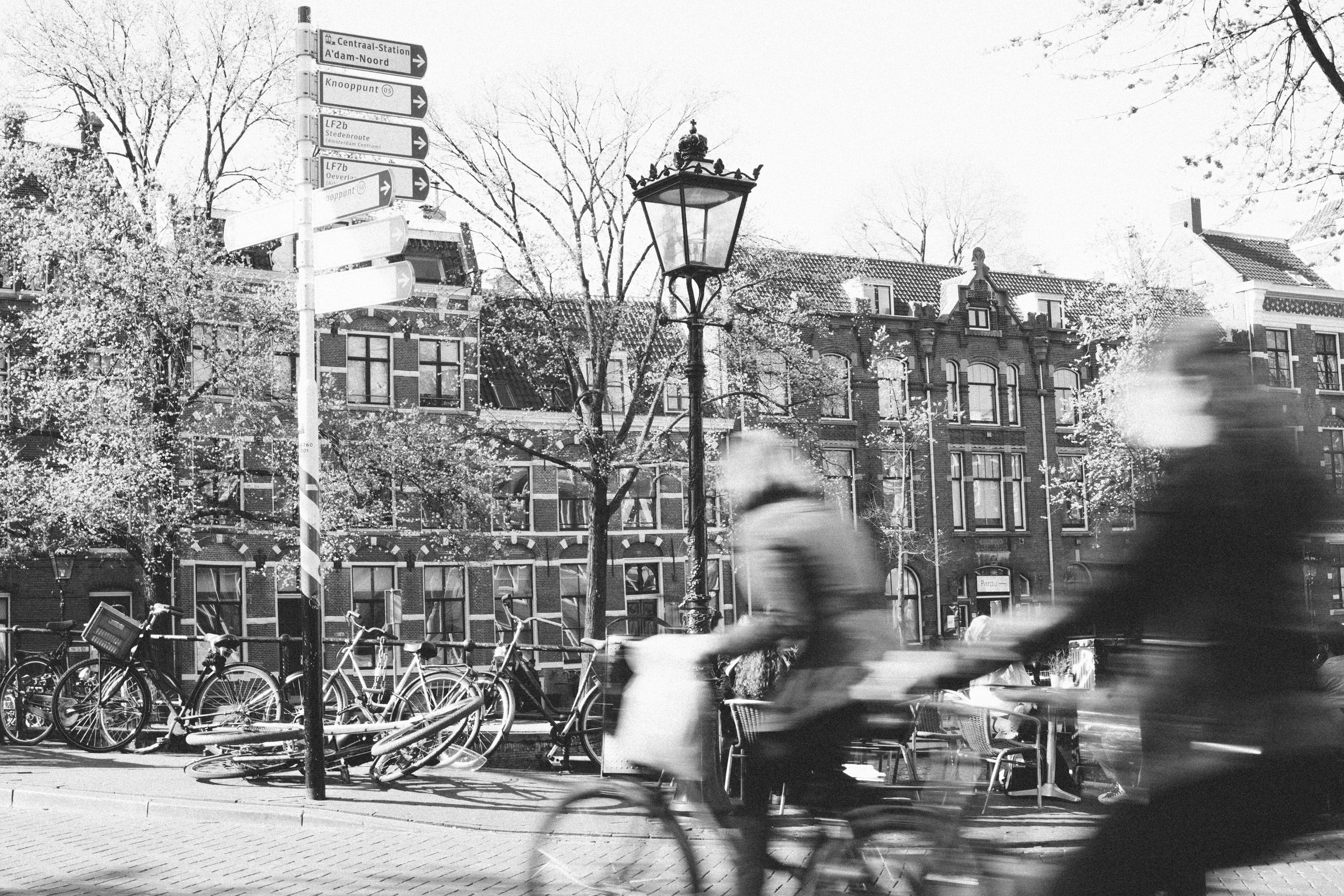 Mikaela Hamilton- Belgium-Amsterdam-32.jpg