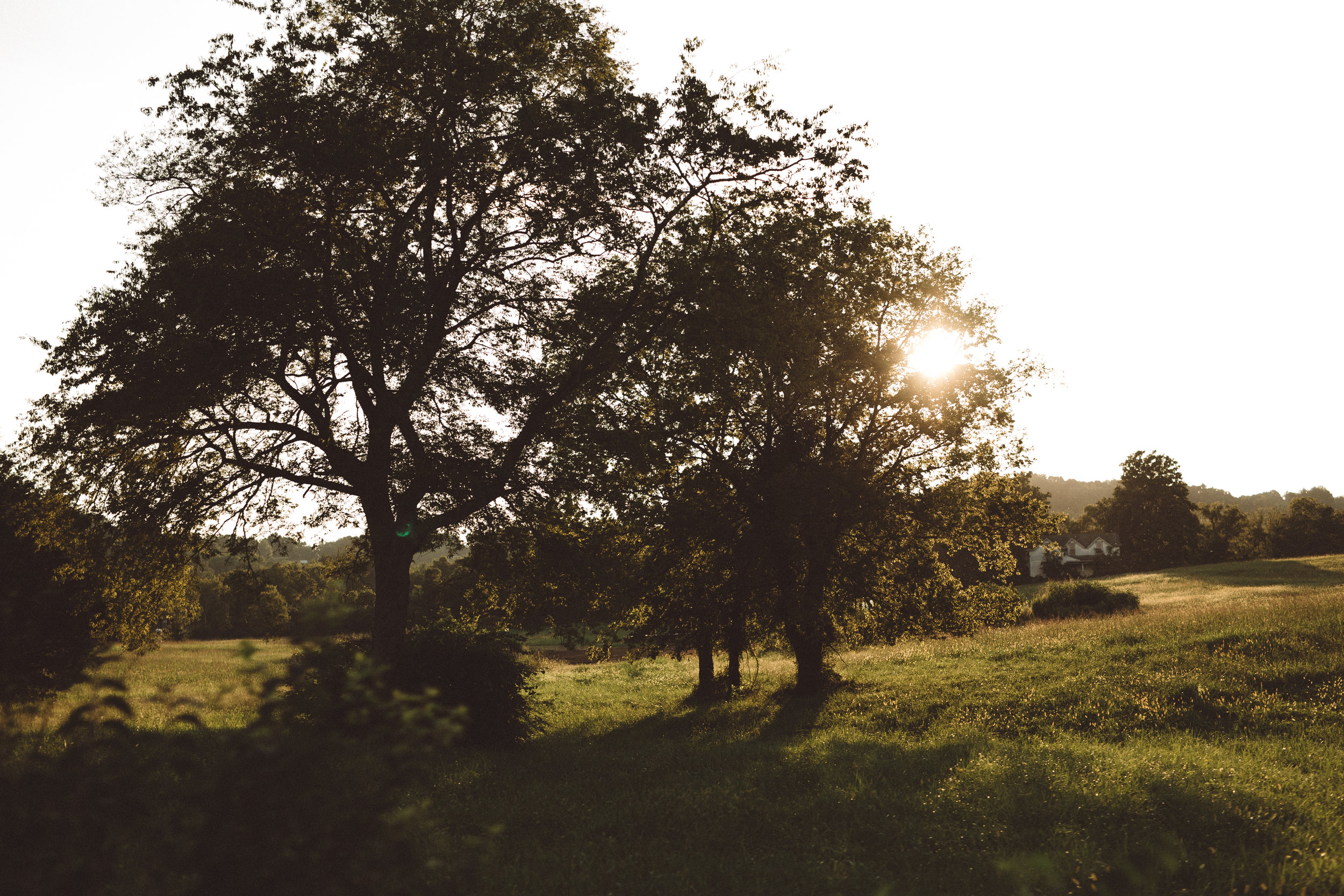 Mikaela Hamilton- LL Sunny Day Paddle-Leipers-36.jpg