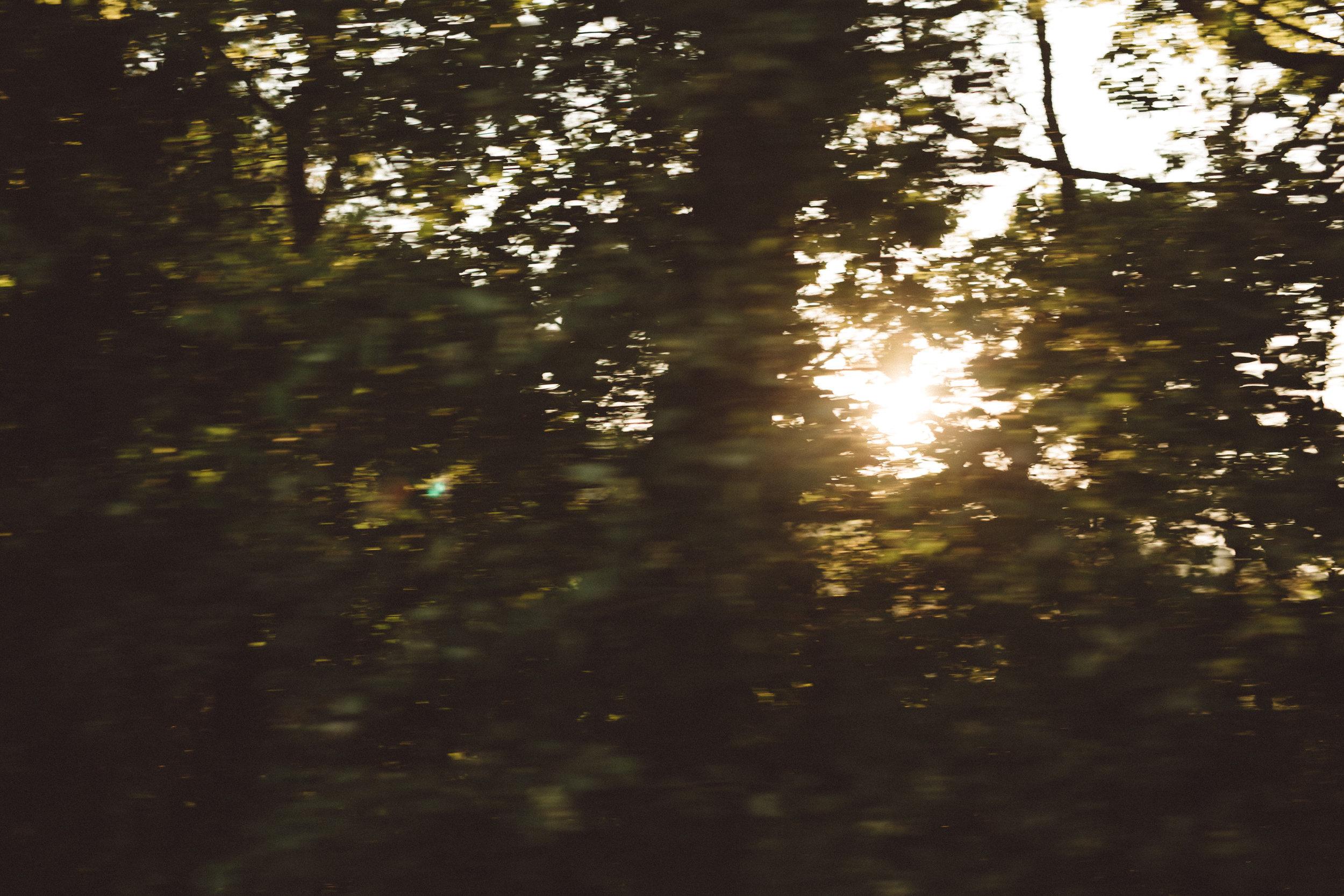 Mikaela Hamilton- LL Sunny Day Paddle-Leipers-45.jpg