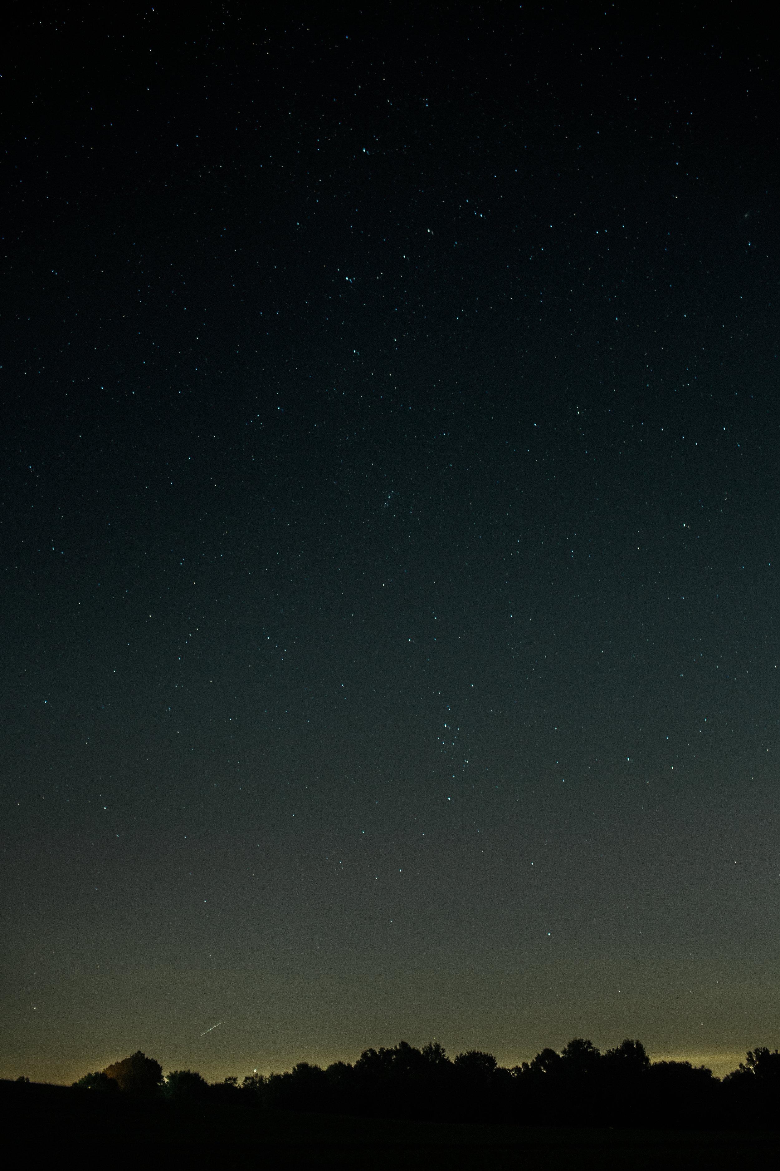 Mikaela Hamilton- Perseid's Meteor-4.jpg