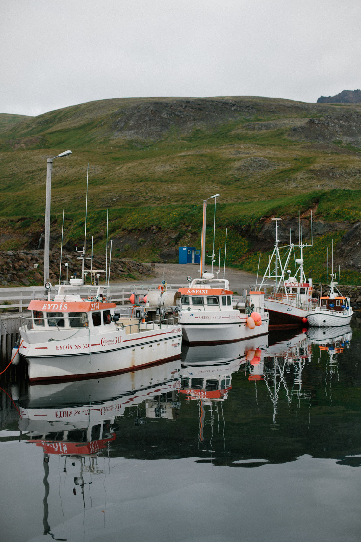 Mikaela Hamilton- Iceland-373.jpg