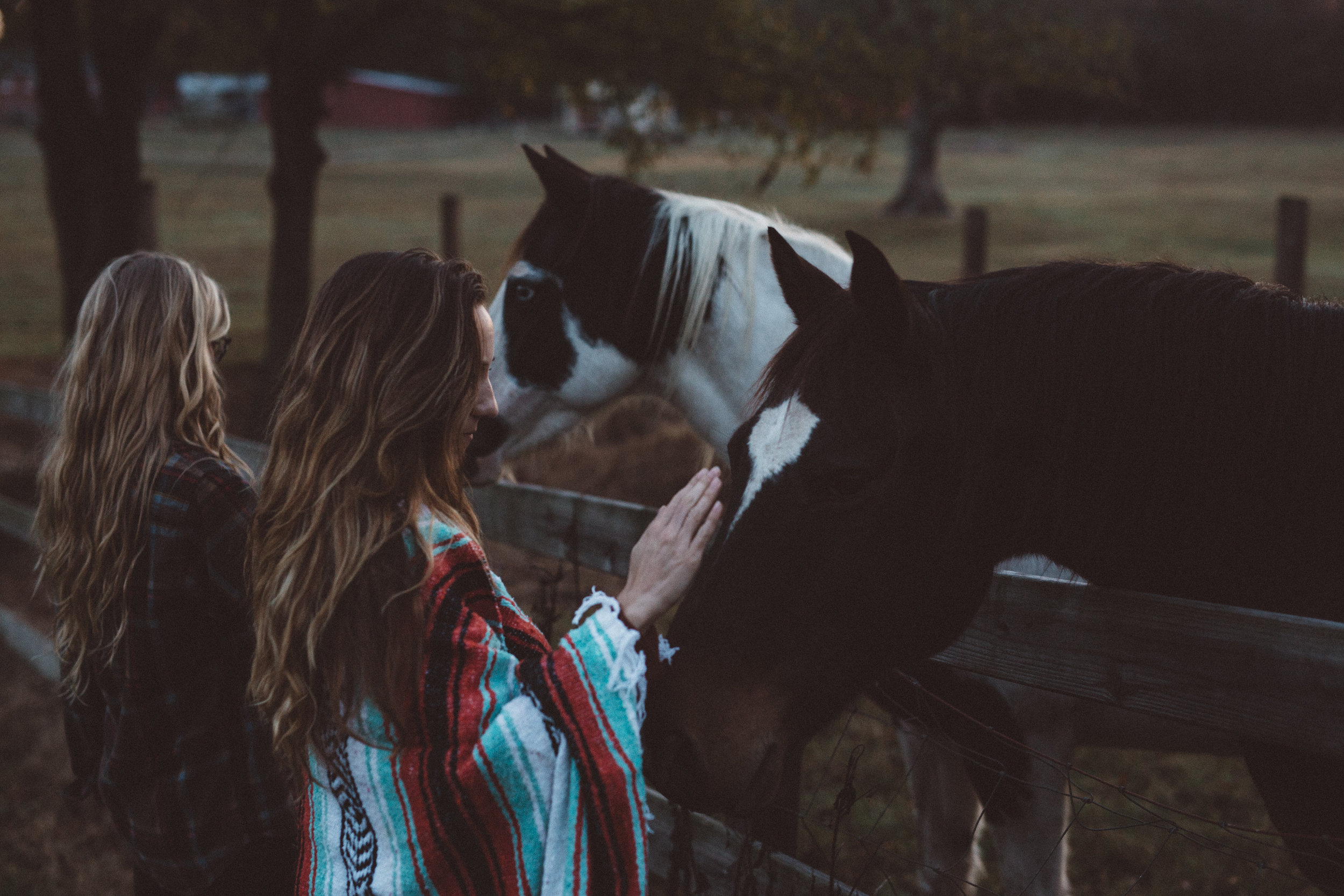 Mikaela Hamilton-Stillwaters Farm-125.jpg