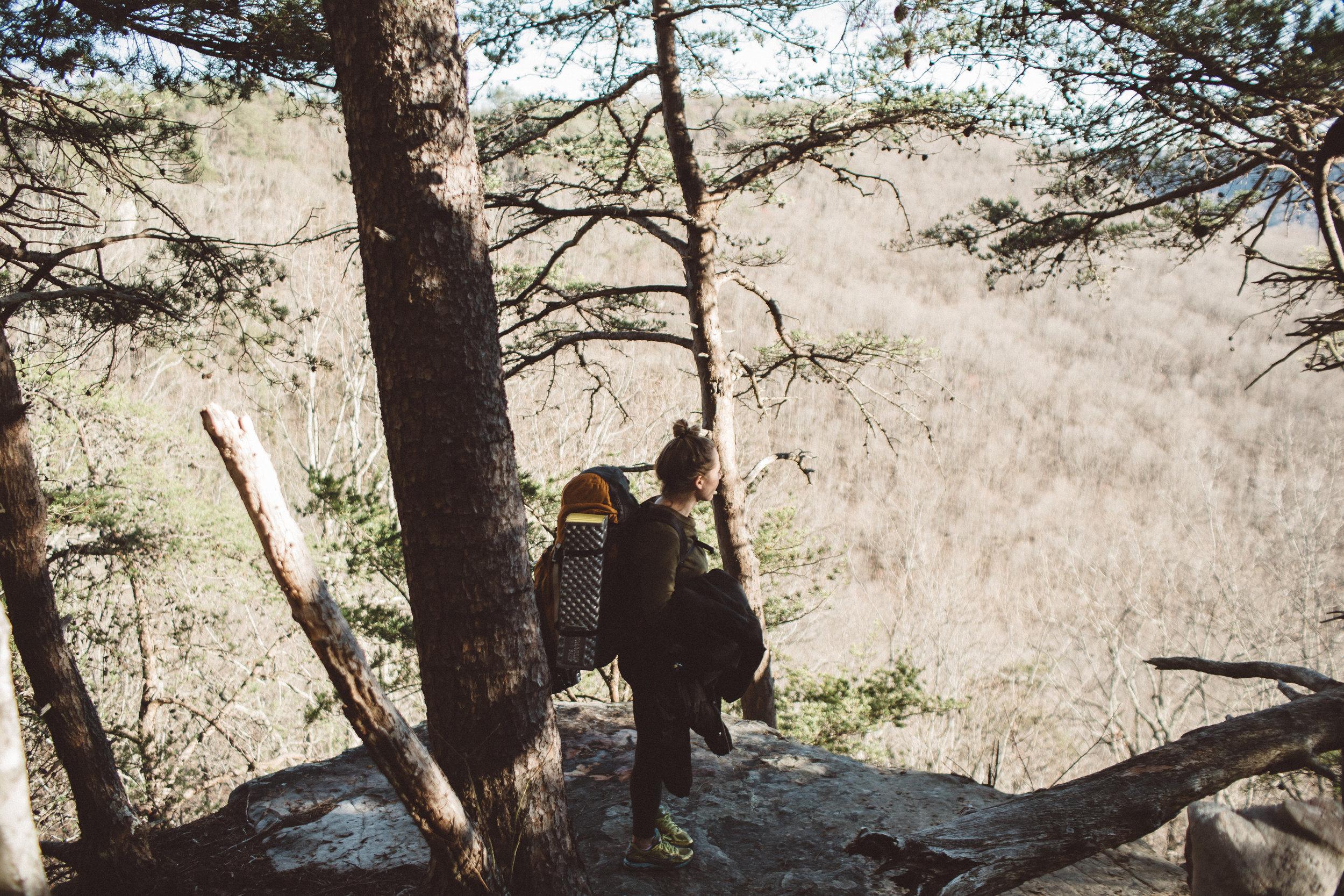 Mikaela Hamilton- Virgin Falls-4.jpg