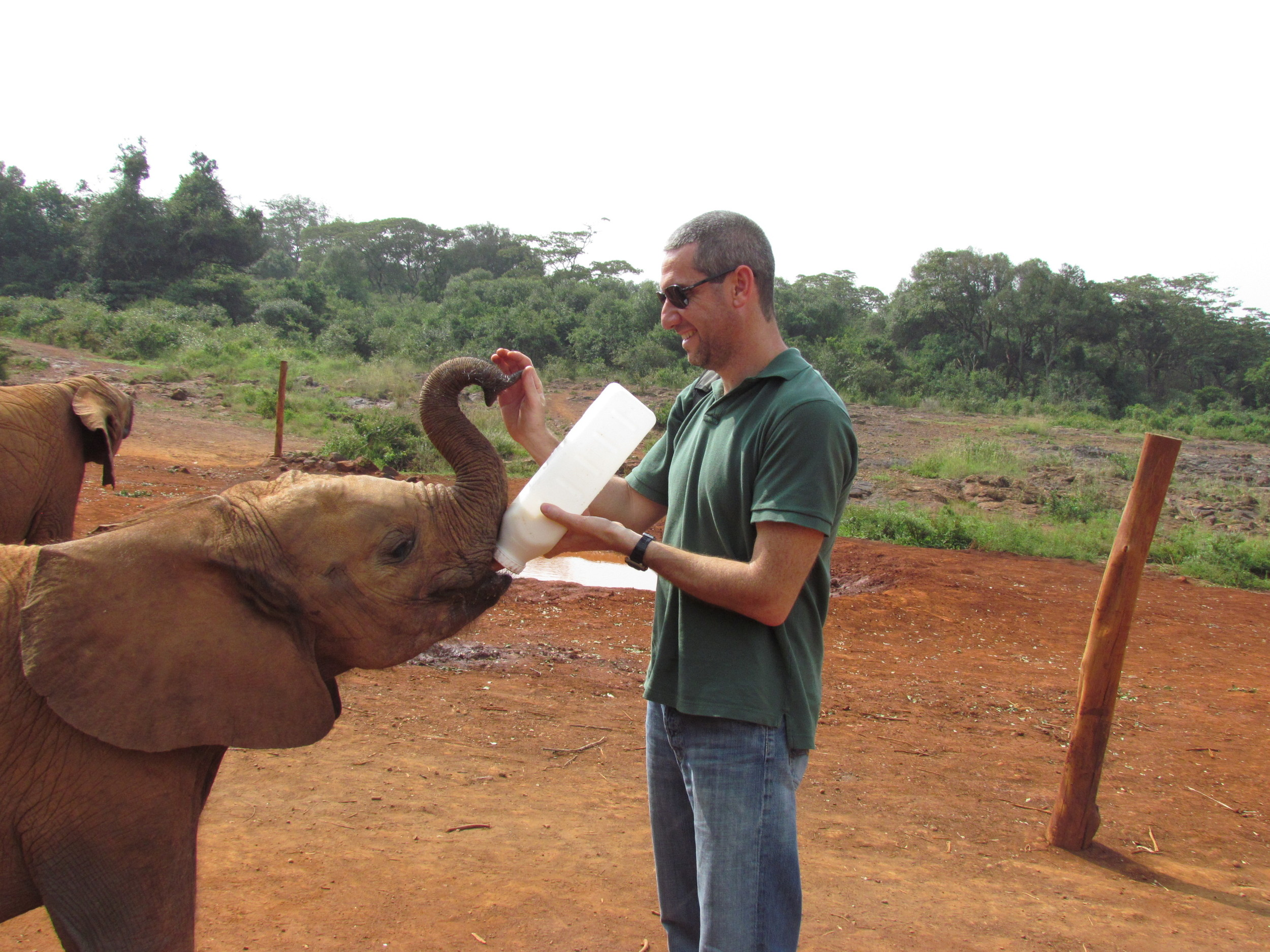David Sheldrick Wildlife Trust - Nairobi, Kenya 2011