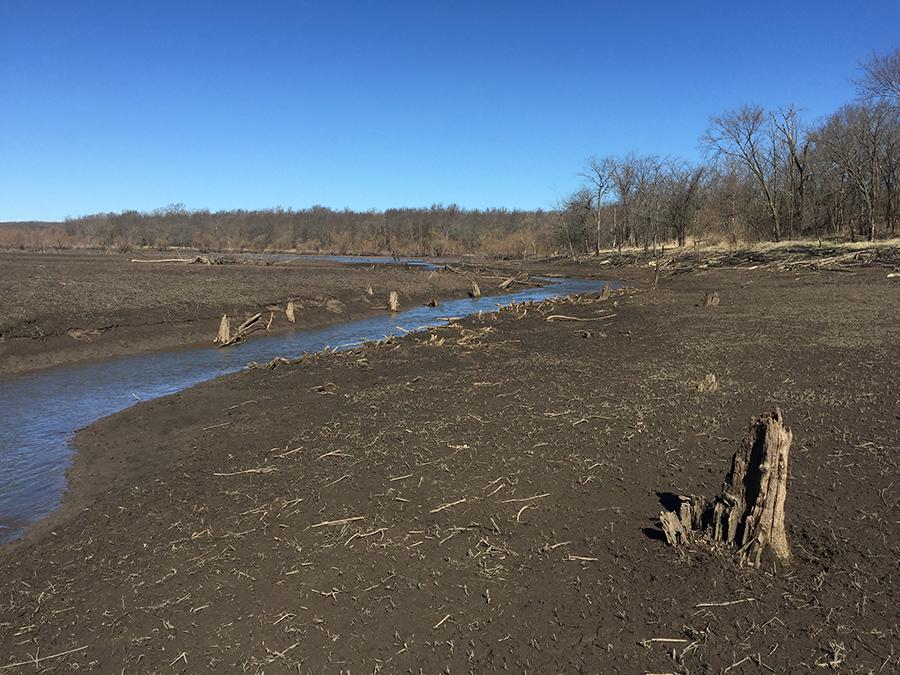 lt leon - Walker Branch Wetland 2.jpg