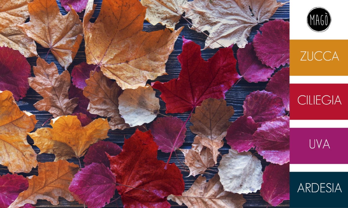 Palette-autunno-tavola-Magò-blog.jpg
