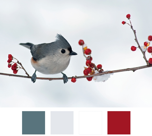 La nostra palette coloreper l'inverno  - si lascia guidare dalla natura. Tenete sempre a mente le nuances che avete scelto per creare un allestimento armonioso.