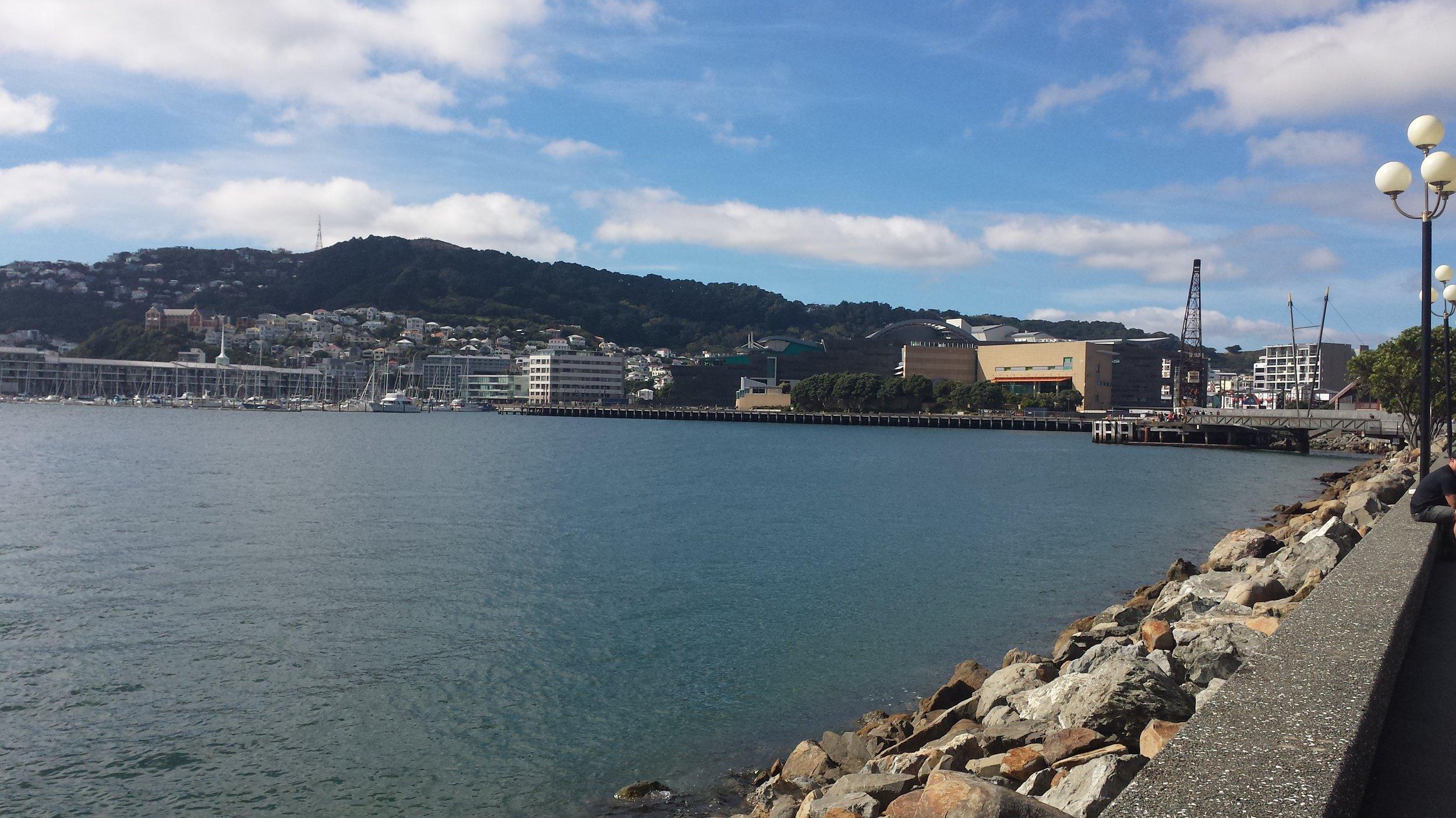 The Wellington harbor.