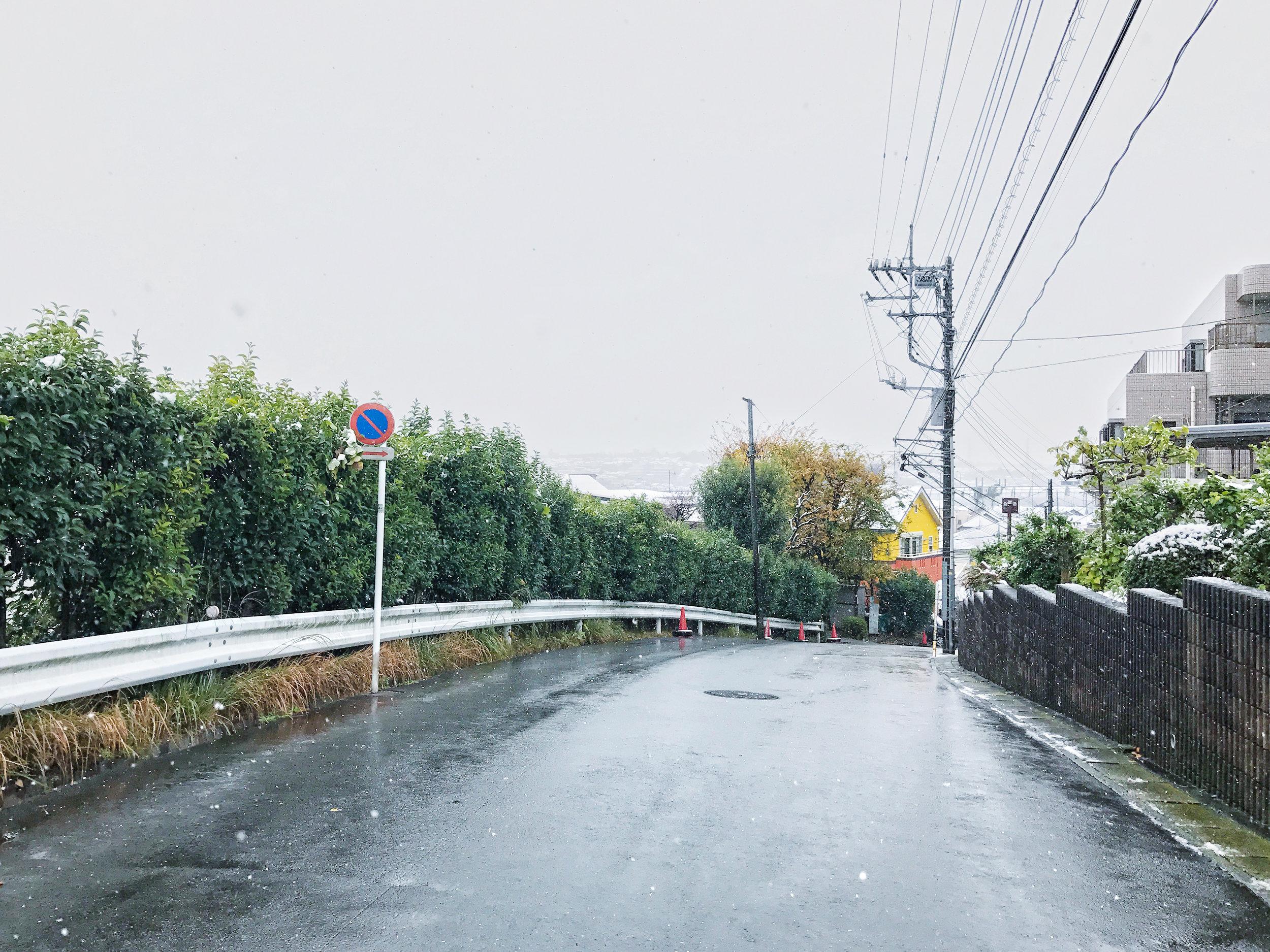 yokohama-snow-2.jpg