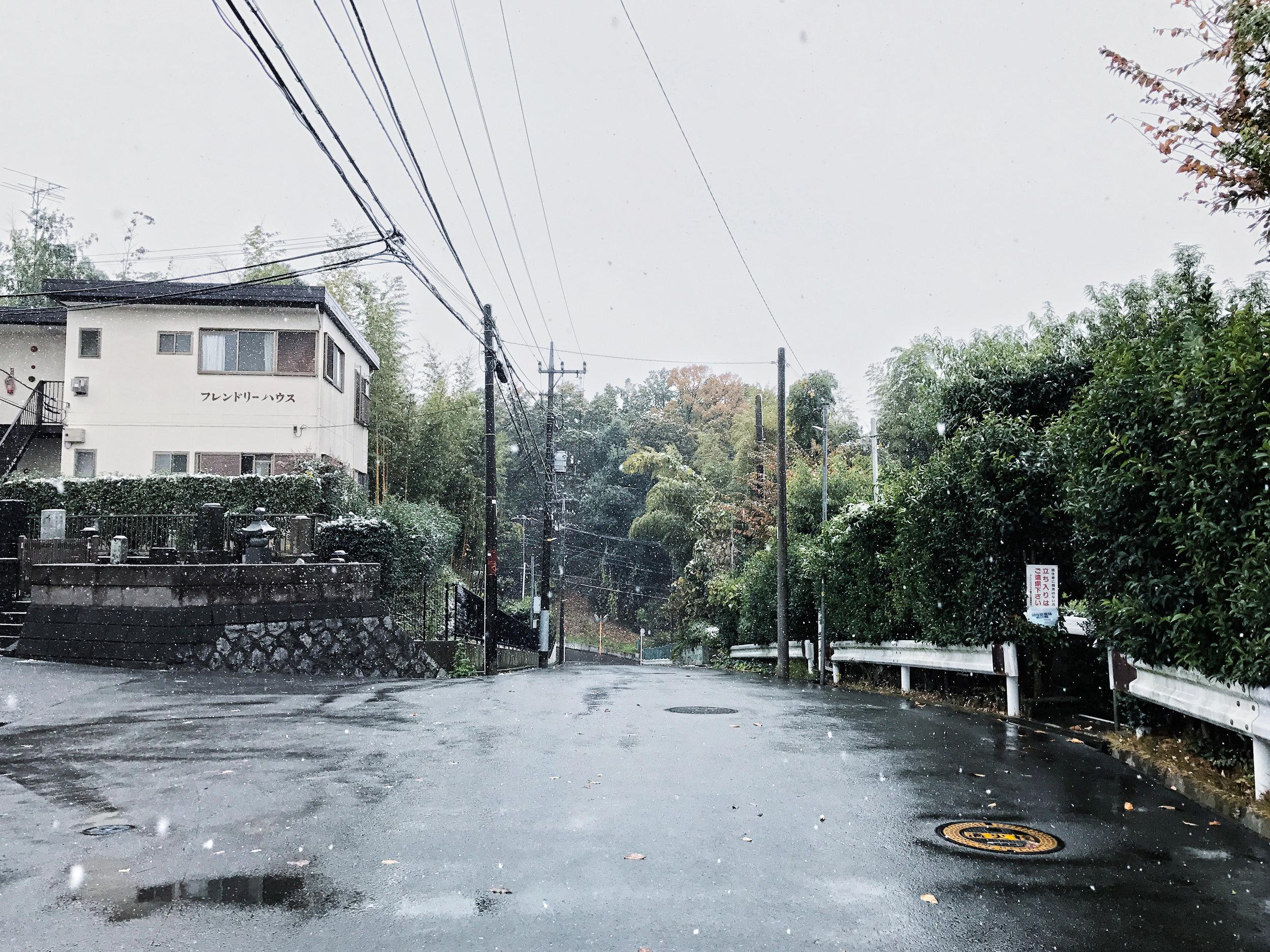 yokohama-snow-1.jpg