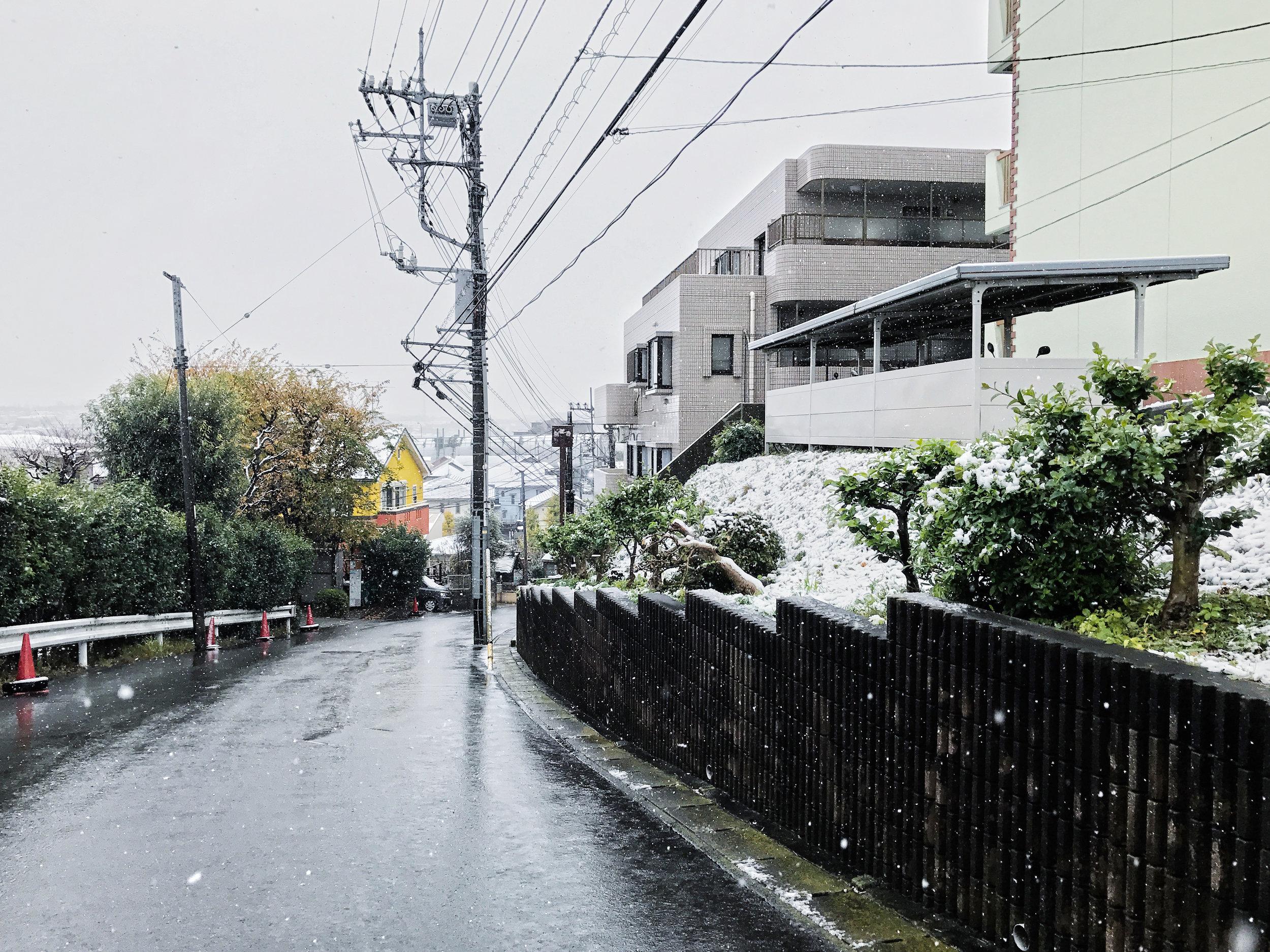 yokohama-snow-3.jpg