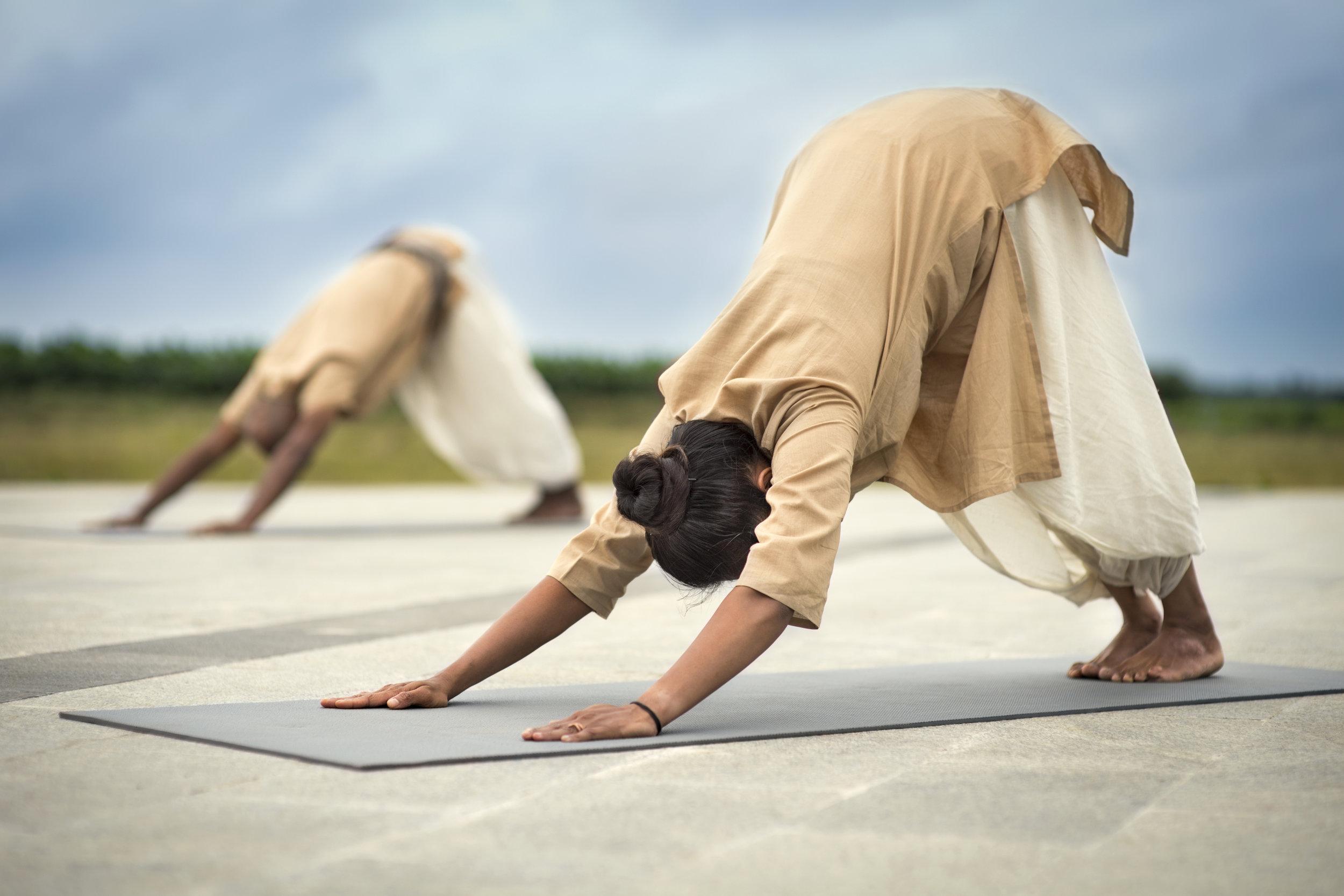 Surya Shakti Workshop Sun Power The Hatha Yoga Effect