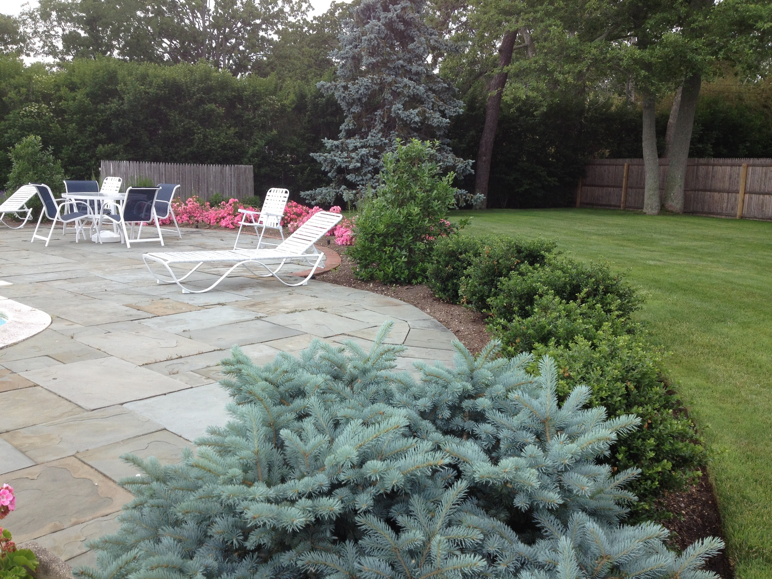 Pool Terrace Planting Bed