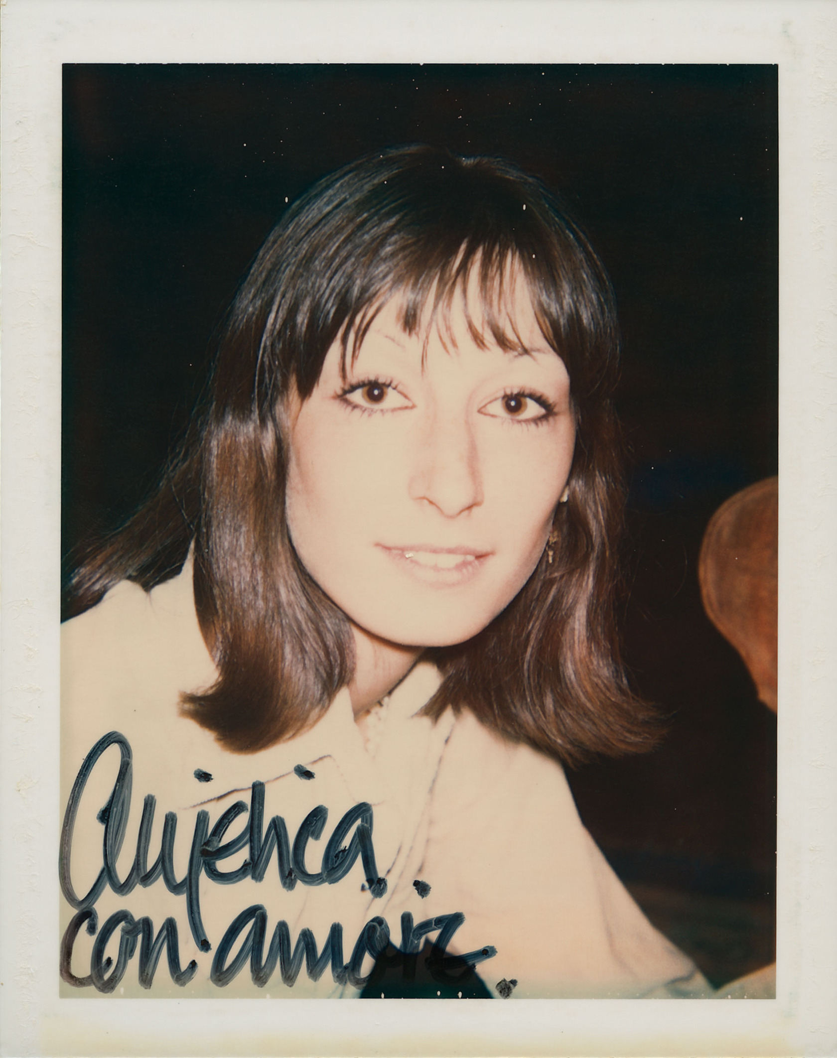 angelica houston by andy warhol