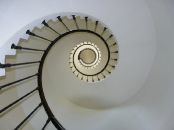 Spiral. Inspired by nature. Image Suurce - Pexels.com