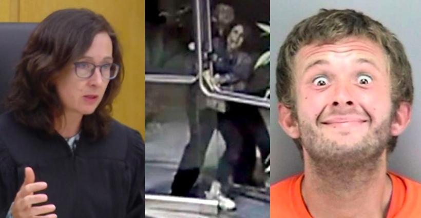 San Francisco Superior Court Judge Judge Christine Van Aken, security video footage of Paneez Kosarian being attacked and suspect Austin James Vincent.