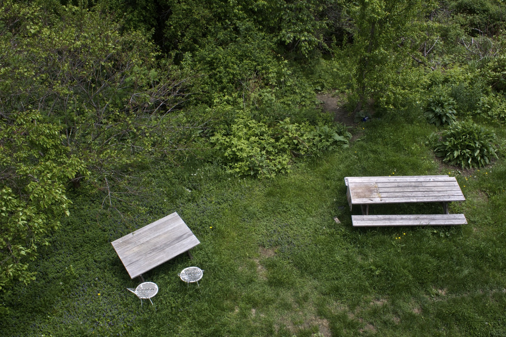 The-Bored-Vegetarian-Picnic-Tables-1760x1173.jpg