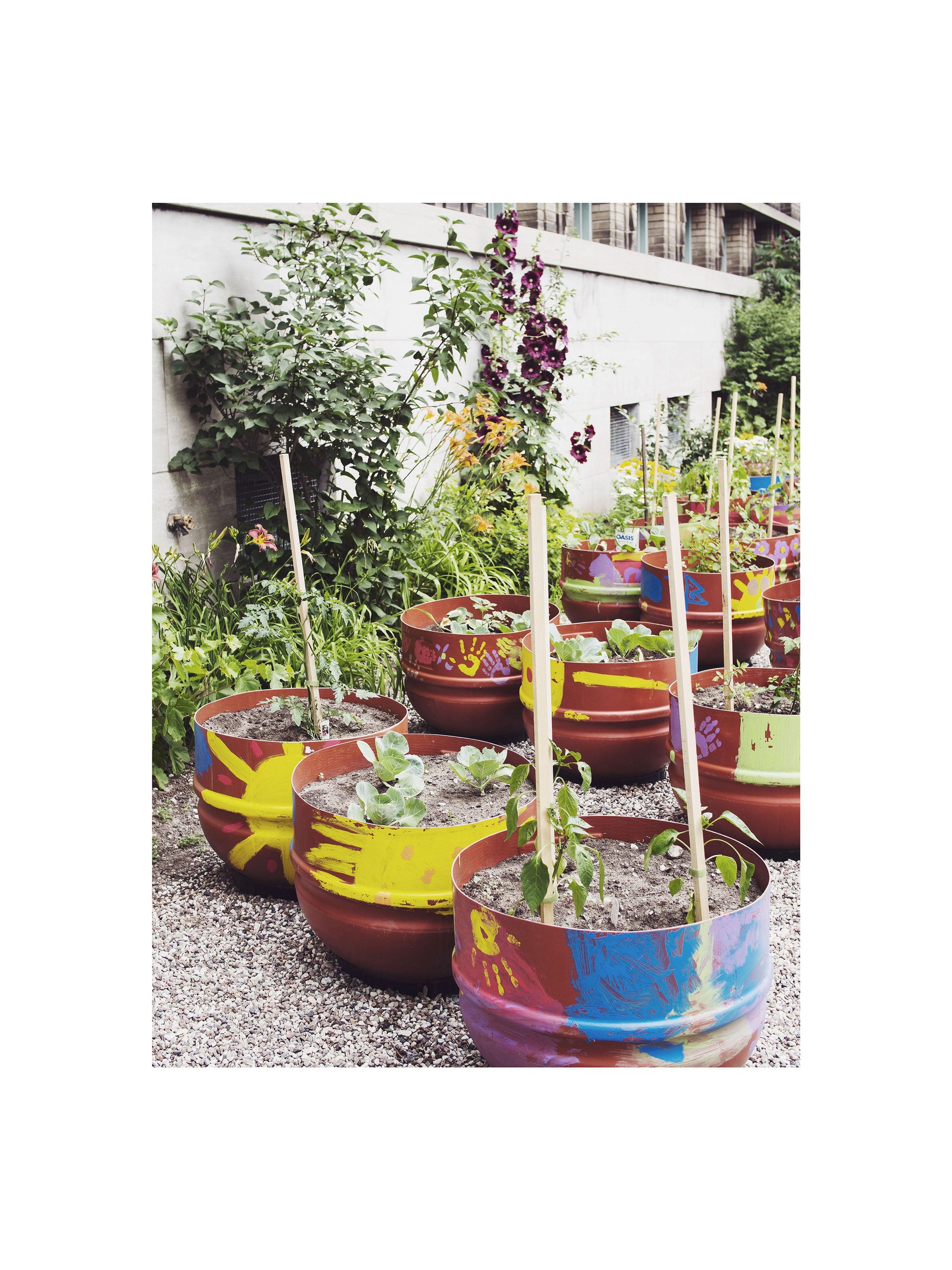 agriculture urbaine 2.jpg