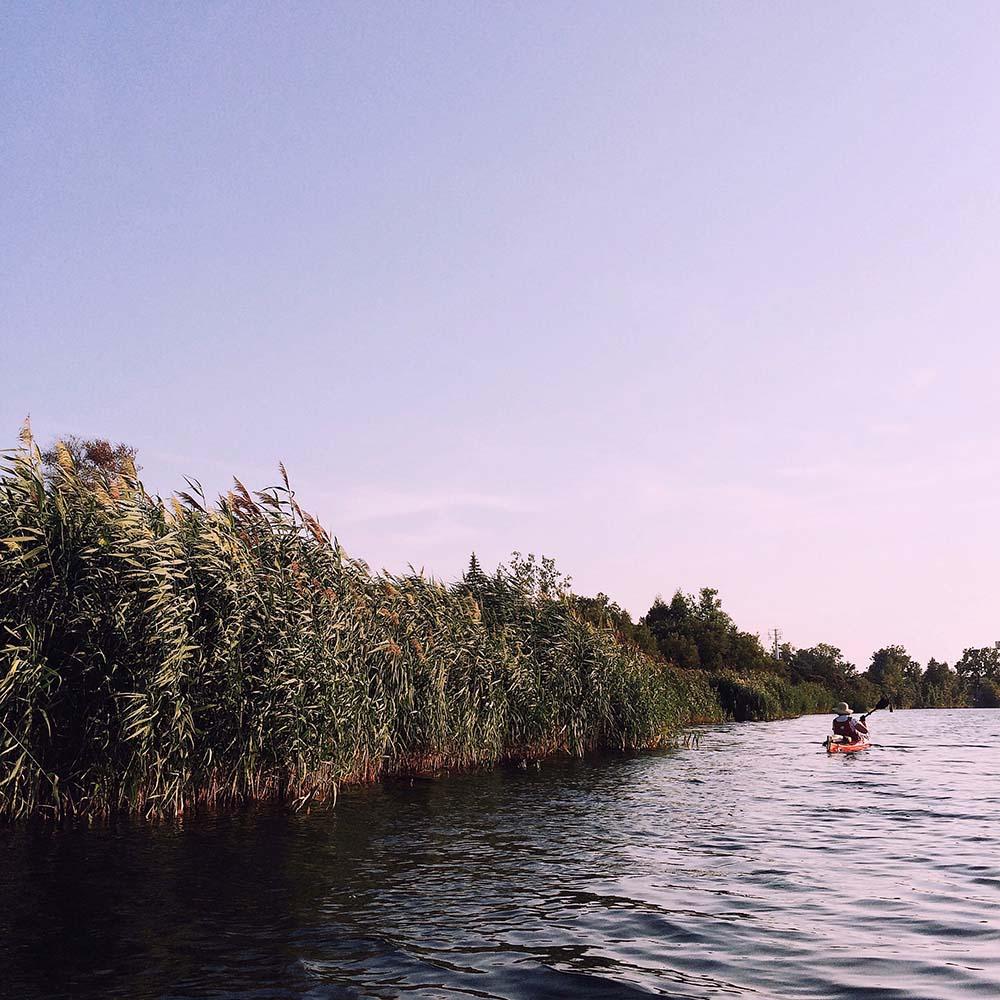 Canal de Lachine