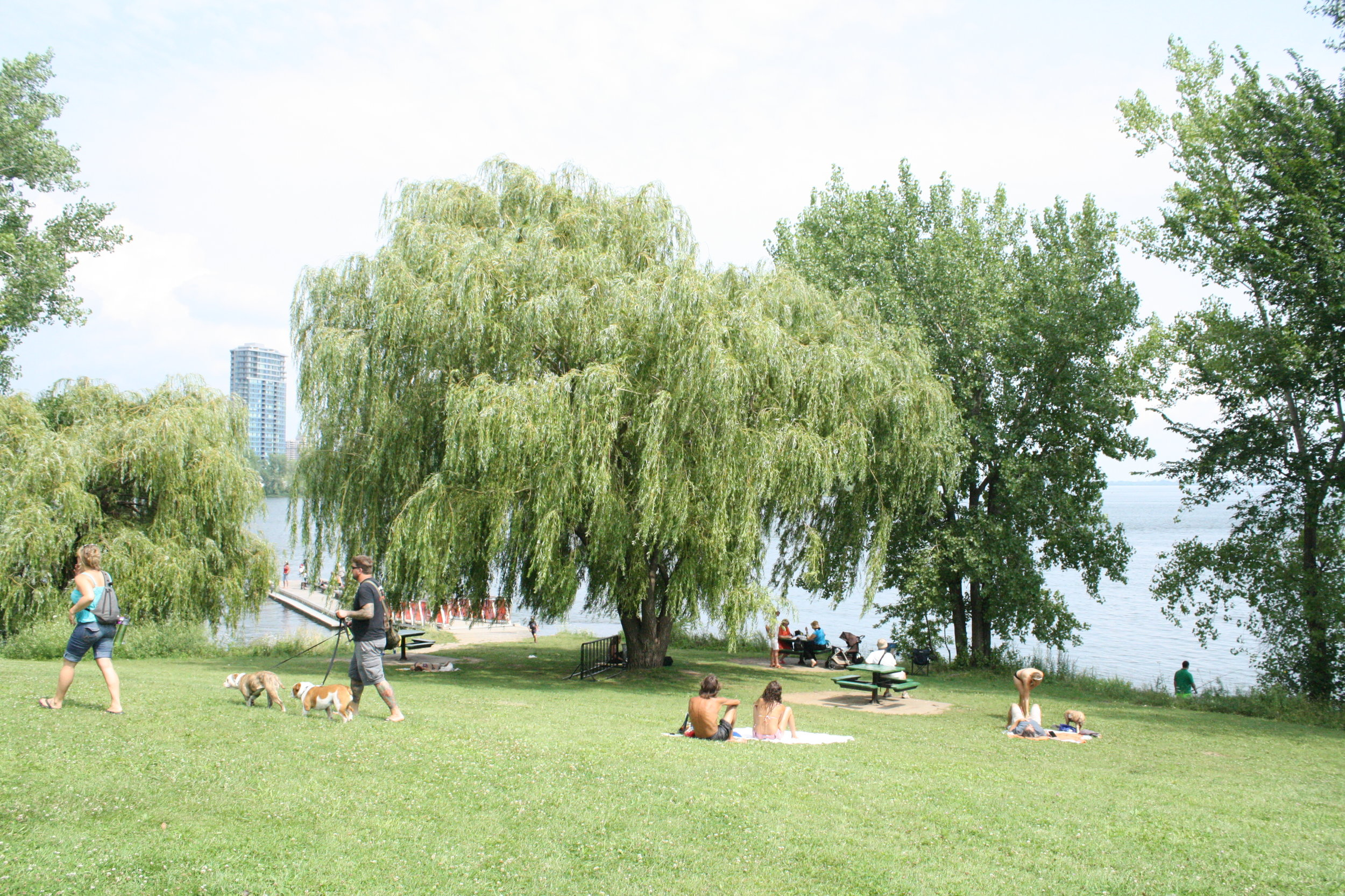 Parc du Quai-de-la-Tortue