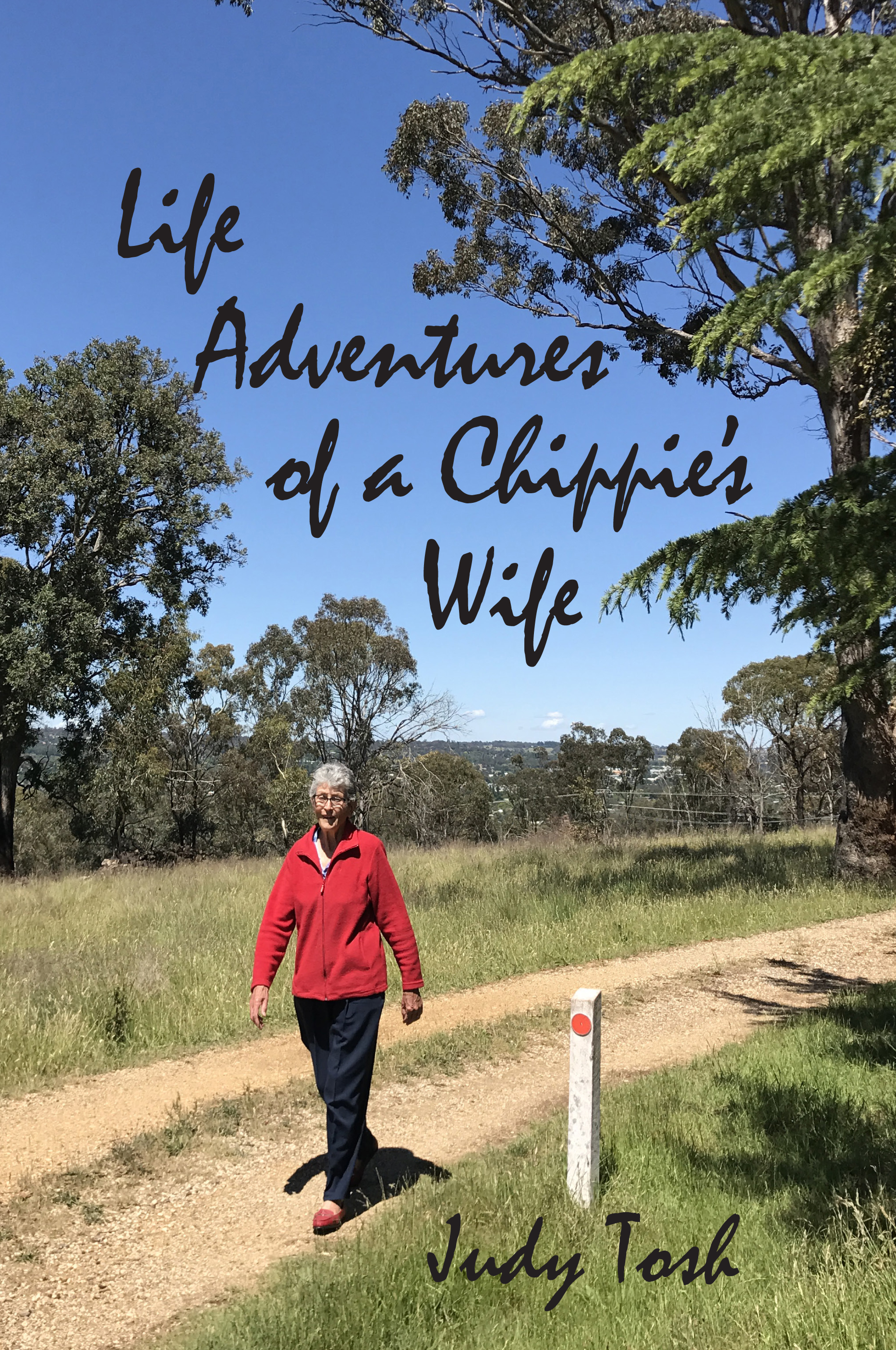 AAA - V2 - Life Adventures of a Chippie's Wife front Cover revised (2).jpg