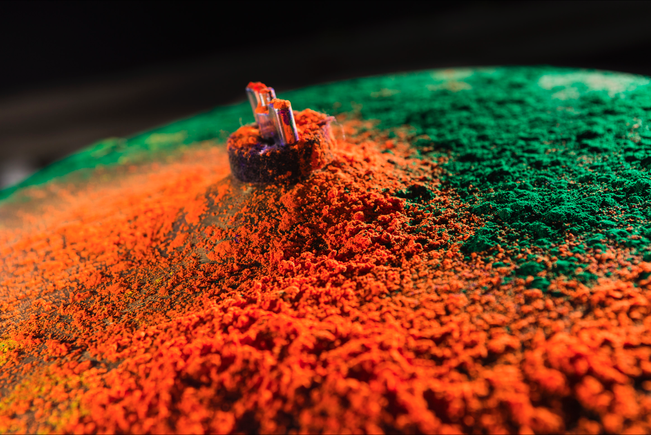 The Color Drum- Matt Doheny Photography-005.png