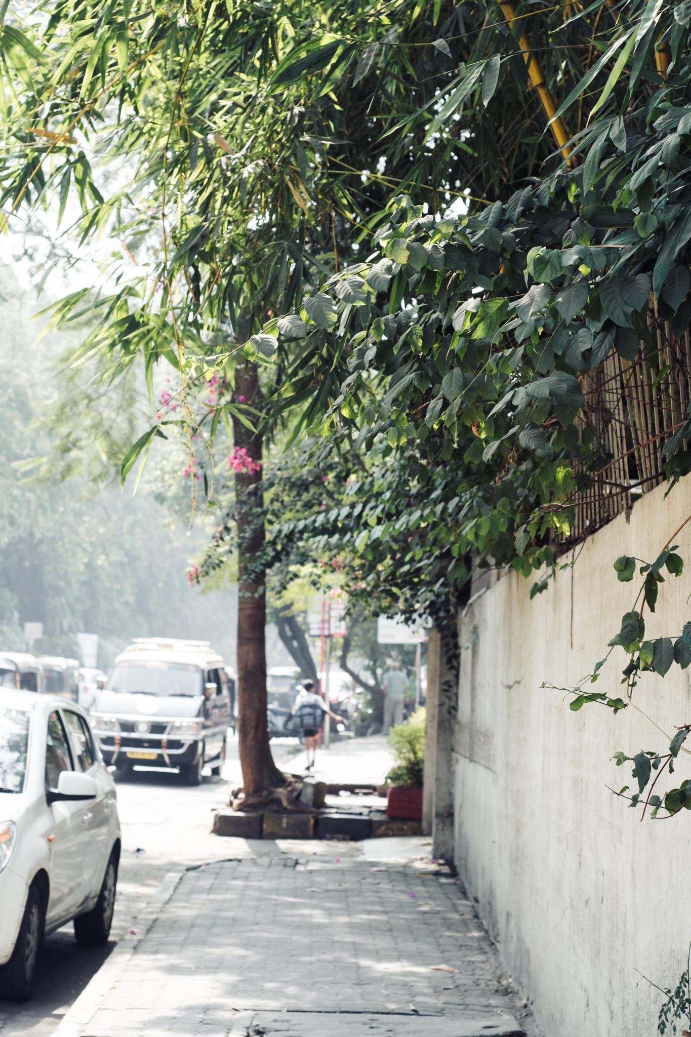 indiafirst-1.jpg
