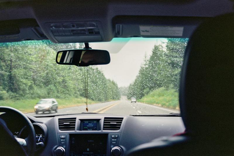 redwoods-7.jpg