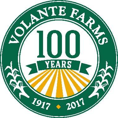 VOL-100-logo-print-fullcolor (2).ai.jpg