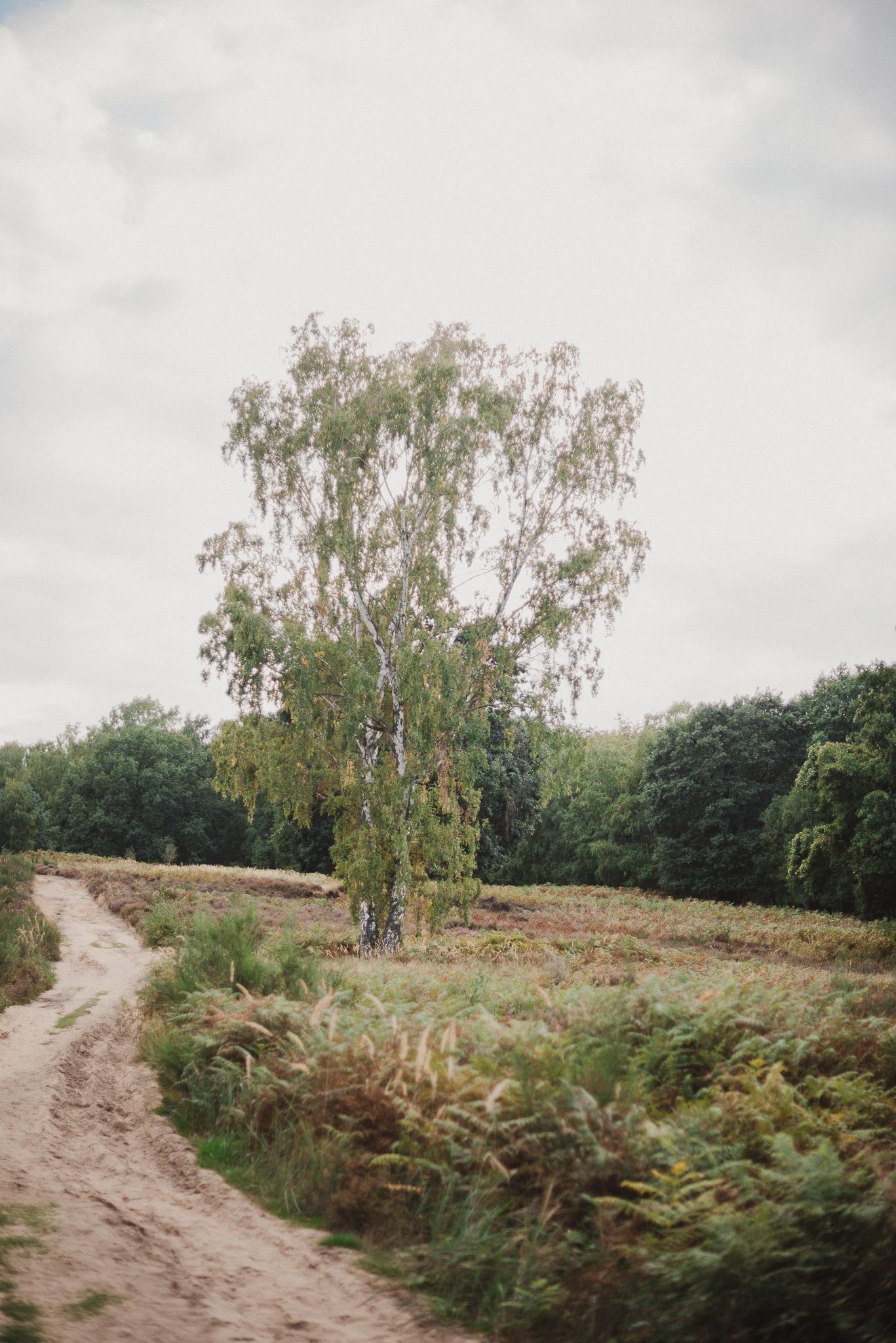 AnnaMariaLangerFotografie_PortraitFotografie_Köln_NRW