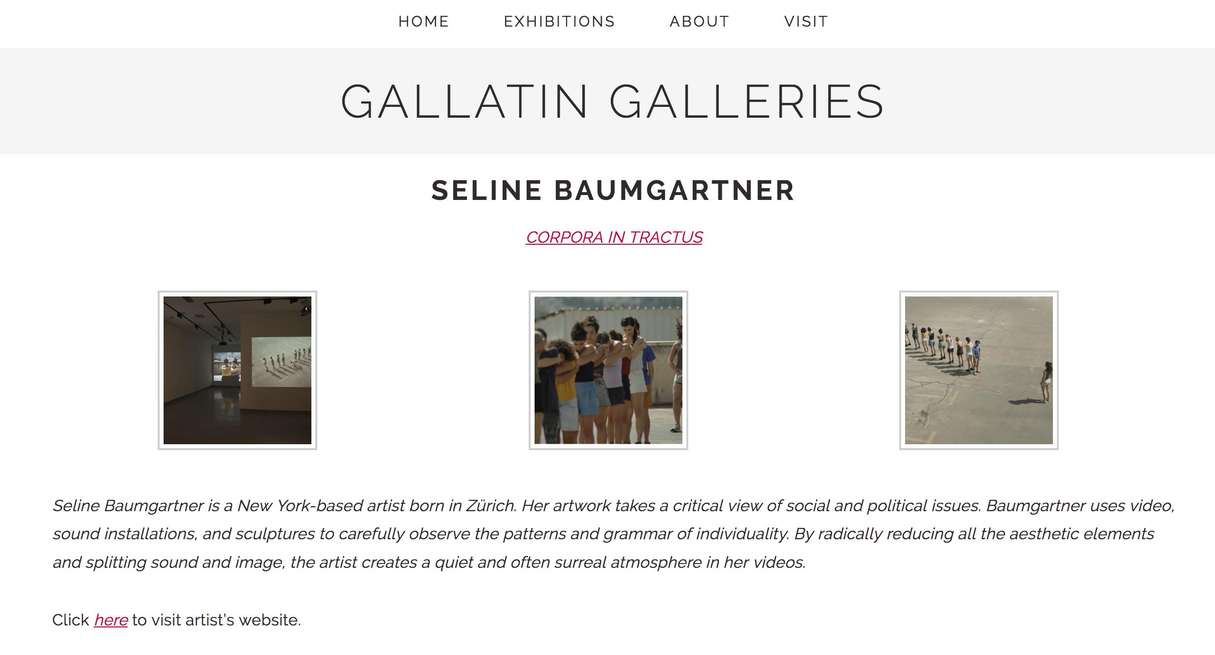 NYU Gallatin Galleries, New York Seline Baumgartner