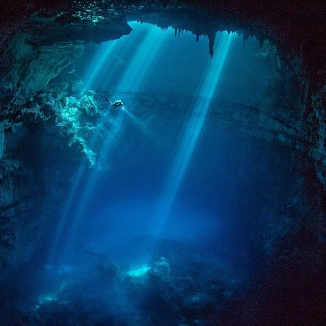 📍A cenote in Mexico.  Cenotes are natural wells within underwater caves which the ancient Mayans relied on for freshwater. Formed through the collapse of limestone that exposes groundwater, these deep, mysterious denotes were believed to be a portal to the rain God, Chaac. It isn't hard to imagine why when you behold the intensity of this dark and sacred underwater realm.  Photo by @PaulNicklen via @natgeotravel.