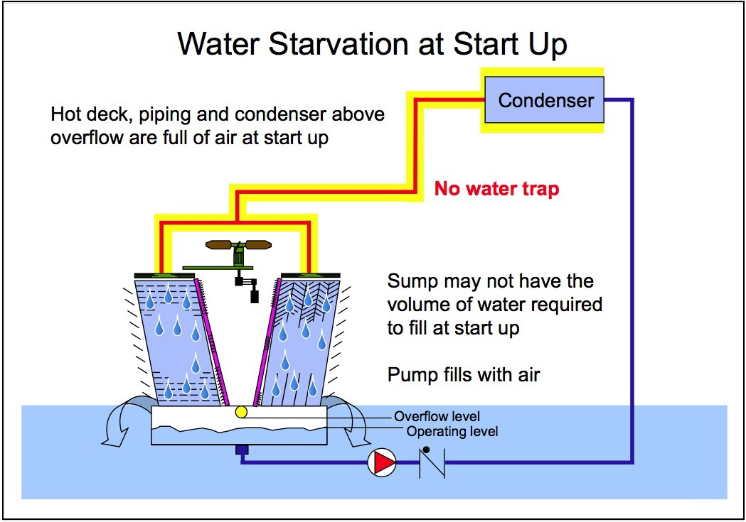 Part 11_Water Starvation.jpg