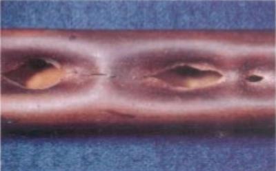 Water hammer damage on tube bundle.