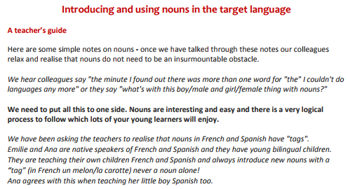 Grammar advice sheets for teachers - Guidance on how to explore Spanish nouns, adjectives and verbs with young learners