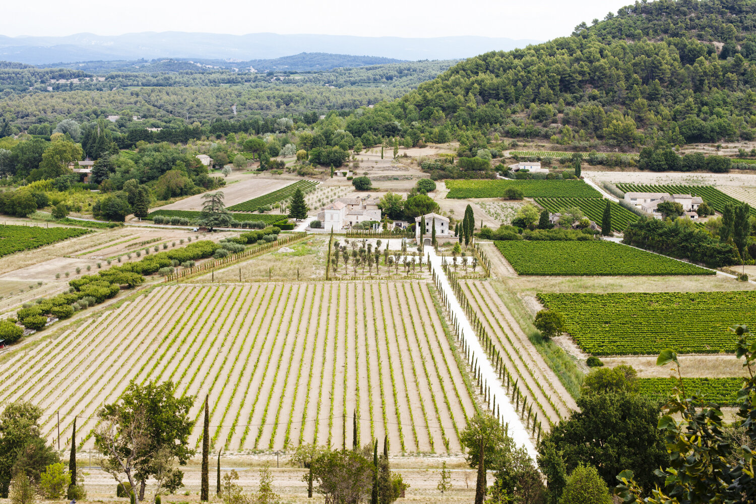 the outstanding views of la Provence. - Good views, good wines, good times.